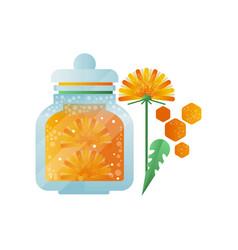 glass jar of honey and dandelion flower natural vector image