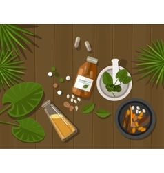 herbal natural medication health nature healing vector image