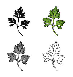 parsley icon in cartoon style isolated on white vector image