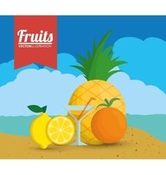 Pineapple lemon orange and cocktail design vector