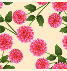 Pink dahlia on beige ivory background vector