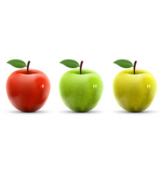 set of red yellow and green apples vector image