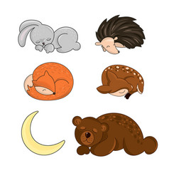Sleeping forest animals autumn vector