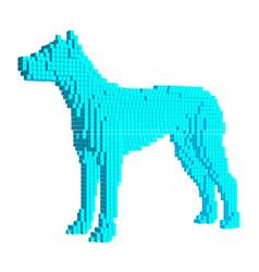 voxel blue dog 3d pixel vector image