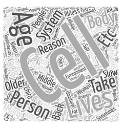 Middle aging in healthy living word cloud concept vector