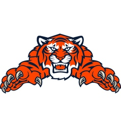 tigers tiger vector image vector image