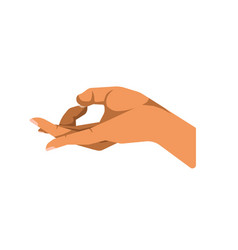 hand gesturing ok vector image vector image