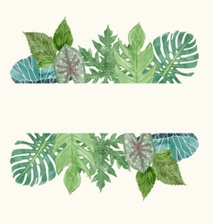 botanical background with tropical leavessummer vector image