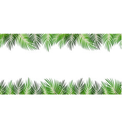 Frame from palm leaf with white background vector