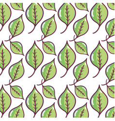 Nice organic leaf plant background vector