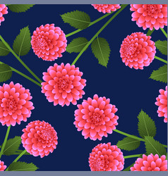 Pink dahlia on navy blue background vector
