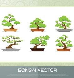 Set bonsai plant in pot flat style vector