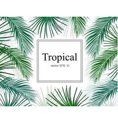 tropical exotic leaves summer frame banner vector image
