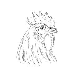 A cock head vector