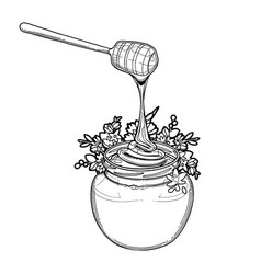 Graphic honey bottle decorated with buckwheat vector