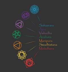 infographig set with chakra icons vector image