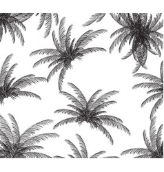 Palm silhouette on white background vector
