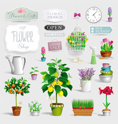Set of the pot plants and garden tools vector