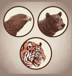 Eagle tiger and bear drawing vector