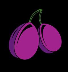 Two purple simple plums ripe sweet fruits vector image