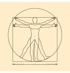 Leonardo da vinci vitruvian man vector