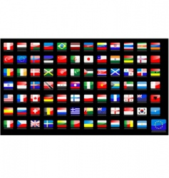 national flags icons vector image