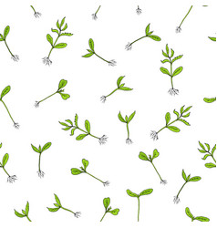 seamless pattern with hand draw sprouts plants vector image