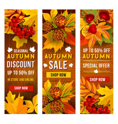 autumn sale and discount price banner template set vector image