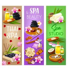 Beauty wellness and massage spa salon vector