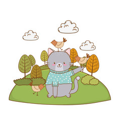 cute cat in field woodland character vector image