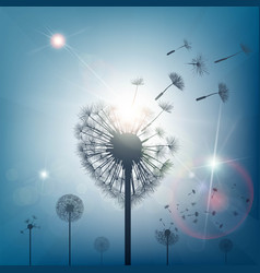 dandelion with seeds in the form of heart vector image