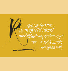 Expressive calligraphic script blots splashes vector