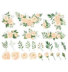 Floral bouquet rose flowers gardening roses vector