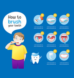 how to brush your teeth vector image
