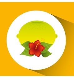 Lemon citrus and red flower leaves icon design vector