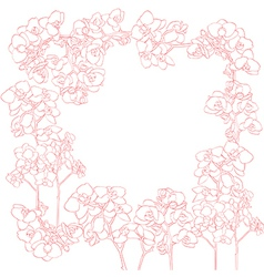 orchids frame vector image