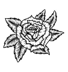rose in tattoo style isolated on white background vector image
