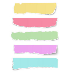 set of elongated tattered different colors paper vector image