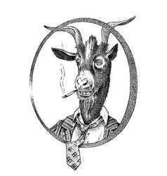 smoking goat student or sheep hand drawn animal vector image
