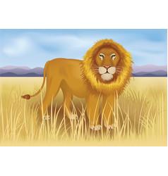 Wild african lion in savanna between mountains vector