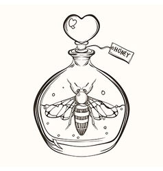 Hand drawn engraving sketch of bee in the bottle vector