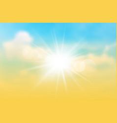 sun rays on the twilight sky vector image