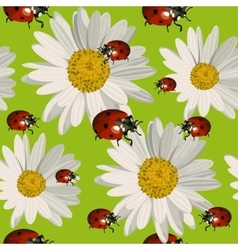 Seamless pattern with daisy flowers and ladybugs vector image