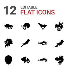 12 zoo icons vector