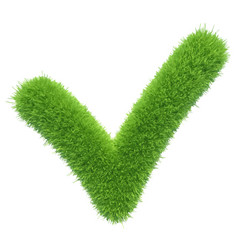 green grass checkmark vector image vector image