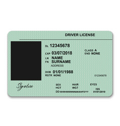 Plastic driver licence vector