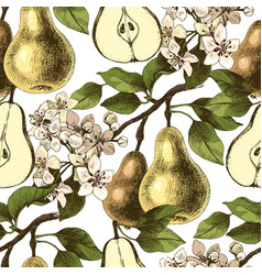 seamless pattern with hand drawn pear branches vector image