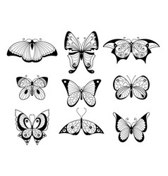 set different butterflies and bugs vector image
