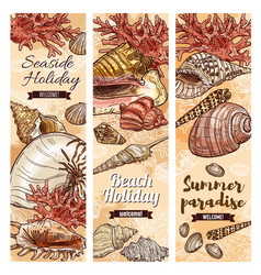 summer holiday travel ocean beach seashells vector image