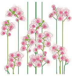 orchids tile vector image vector image